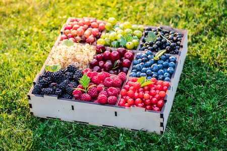 Summer berries in wooden box on the green grass. Top view. Stockfoto