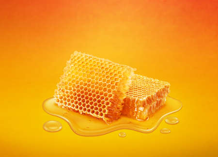 Perfect honey combs lay in puddle of honey isolated on yellow background.