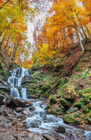Mountain stream in the forest. Beautiful colorful autumn landscape in the forest.
