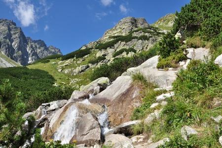 tatra: Tatra Mountains in Slovakia Stock Photo
