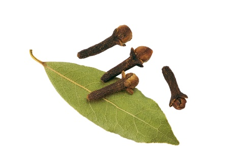 Cloves and bay leaf on a white background