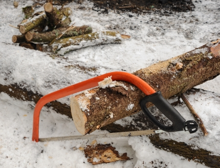 Preparation of firewood for a fire in the winter Stock Photo