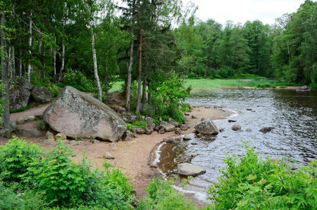 Forestry place with rocks, pond and pine trees