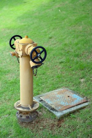 Yellow fire hydrant in Malaysia