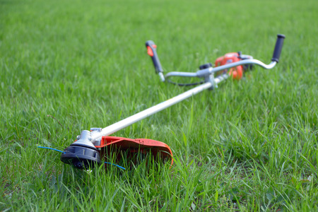 Weed trimmer on the lawn, focus foreground Stock Photo