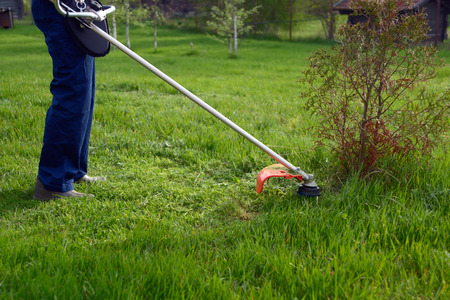 Man mowing grass with petrol weed trimmer photo
