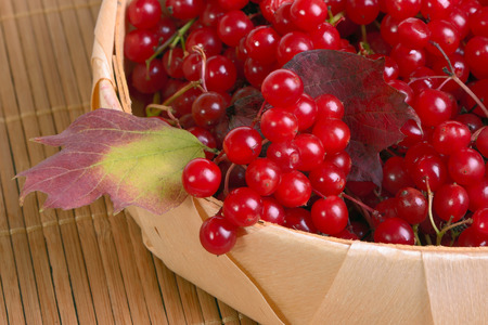 guelderrose: Guelder-rose berries in a wattled basket close up Stock Photo