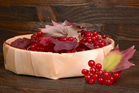 Guelder-rose berries on wooden table