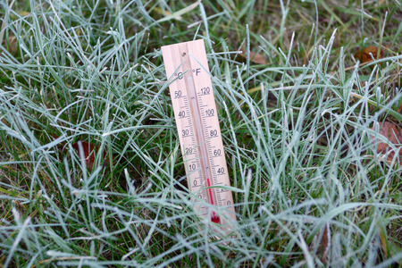 thermometer: Thermometer is in the green grass covered with hoarfrost and shows subzero temperature