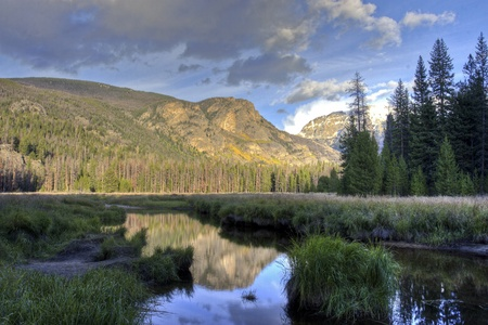 Reflection of mountains and forest in a pond. Colorado, USA photo