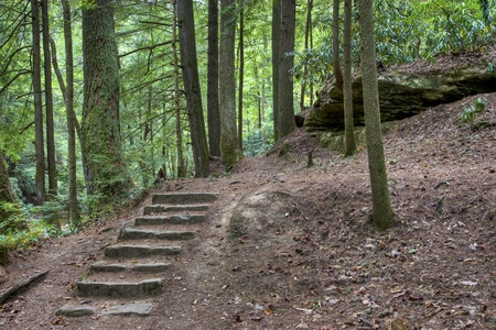 Old stone stair in the mystic woods.  Kentucky, USA photo