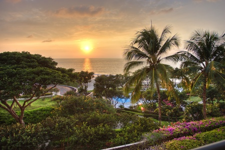 Sunset at tropical resort with view of ocean and lush garden. photo