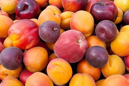 terciopelo rojo: Pila de frutas de verano de colores - albaricoques, nectarinas, melocotones, ciruelas y damascos de terciopelo rojo. Foto de archivo
