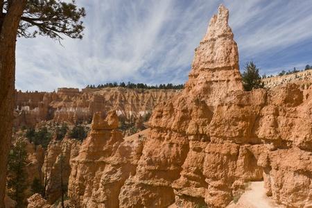 hoodoos: Hoodoos in Bryce Canyon National Park. Utah, USA Stock Photo