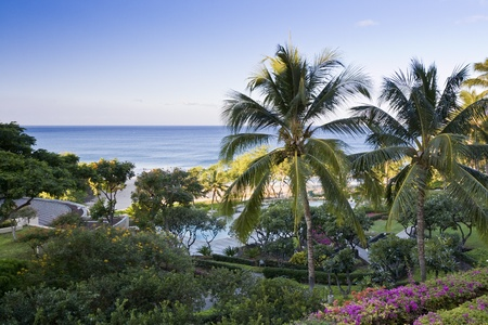 Tropical resort with ocean view and lush garden. Hawaii. Stock Photo - 11790709