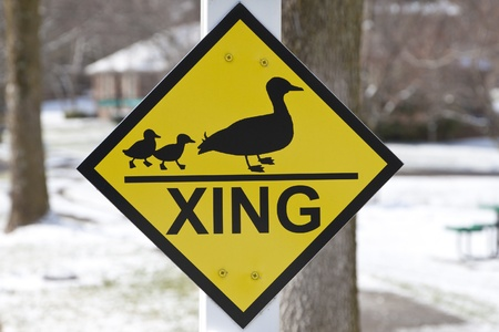 Duck crossing warning sign