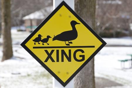 Duck crossing warning sign