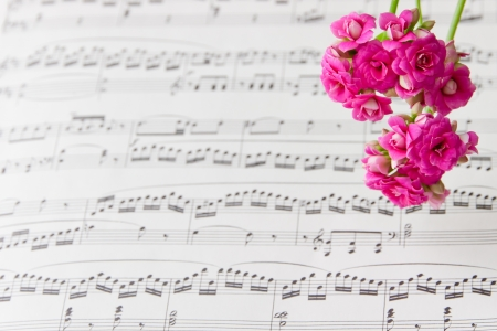 sheet music: Flowers on music notes sheet, abstract art background   selective focus