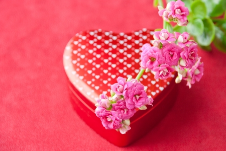 Box of chocolates and flowers for Valentines day on red background  selective focus photo