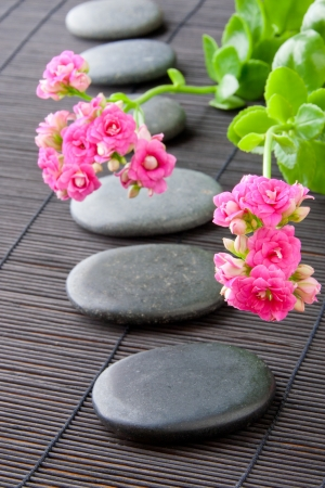 Stones path with flowers for zen spa background, vertical  selective focus on the first flower photo