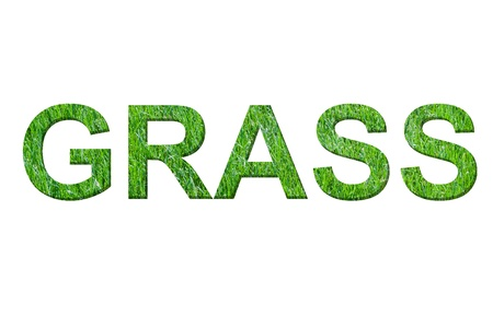 GRASS word made from my own photo of grass  photo
