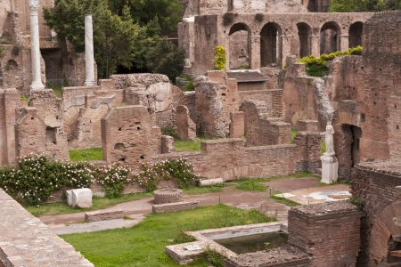 vestal: Ruins of the House of the Vestals in the Roman Forum  Rome, Italy