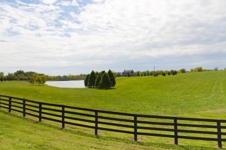 カントリー ・ ハウスと日当たりの良い夏の日の池
