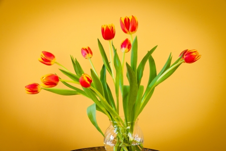 Red tulips in a glass  vase on mosaic table   Horizontal  photo