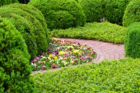 Fresh green landscape of formal garden  at spring  photo