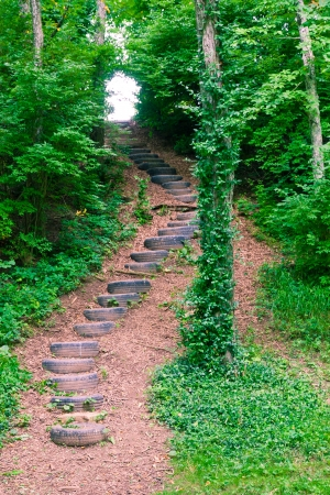 Stairs made of old tires in the  woods  photo