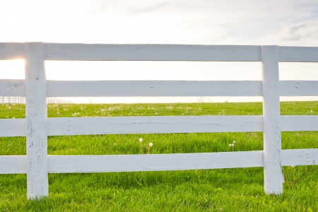 pasture fence: White wooden horse fence on country site at spring. Stock Photo