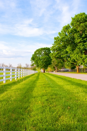 Country road surrounded the horse farms at spring. photo