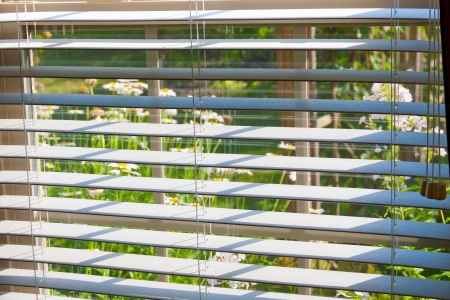 jalousie: Window with blinds overlooking flower garden. selective focus
