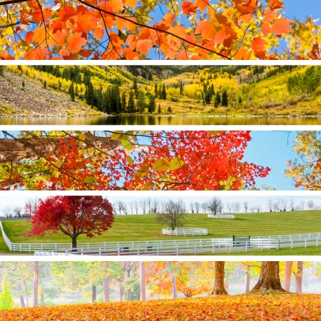 colorado mountains: Autumn Collage with 5 different pictures banners