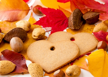 Two heart-shaped cookies between autumn leaves and nuts  selective focus photo