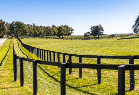 pasture fence: Double fence at horse farm. Country summer landscape. Stock Photo