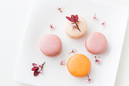 French sweet delicacy, macaroons colorful  variety on a plate with spring blossom, top view. Stock Photo