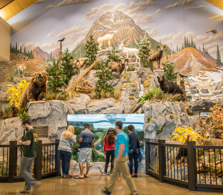 fishingpole: LEXINGTON, KY USA - MARCH 16, 2016.  Cabelas opens its Lexington store on March 16, 2016. Cabelas retails hunting, fishing and outdoor gear. Editorial