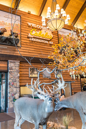 fishingpole: LEXINGTON, KY USA - MARCH 16, 2016.  Cabela's opens its Lexington store on March 16, 2016. Cabela's retails hunting, fishing and outdoor gear.