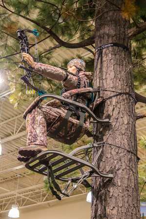 archer fish: LEXINGTON, KY USA - MARCH 16, 2016.  Cabelas opens its Lexington store on March 16, 2016. Cabelas retails hunting, fishing and outdoor gear. Editorial