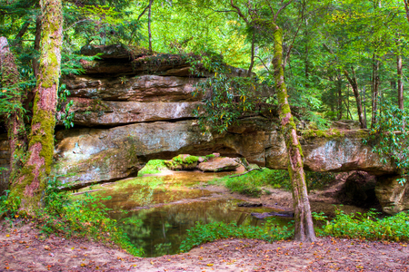 Mountain forest and natural stone bridge. Red River Gorge in Kentucky, USA Stock Photo