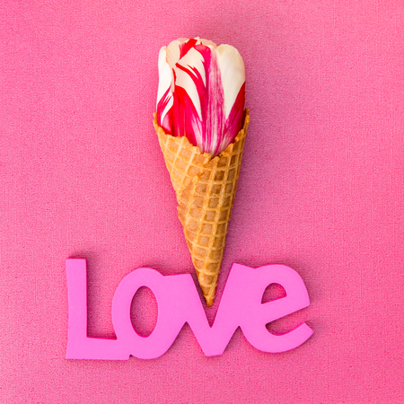 Tulip  flower in the ice cream waffle cone.