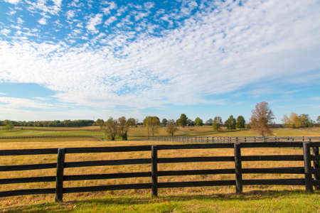 Beautiful autumn country landscape with pastures of horse farms. Imagens