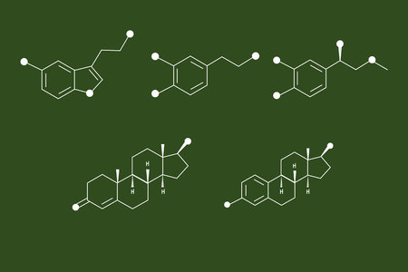 Hormones on a school blackboard Vector Illustration