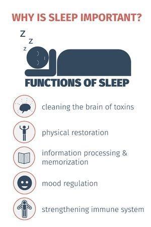 cushions: Sleep infographic Flat illustration. Illustration