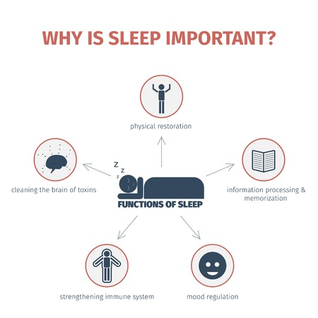 Sleep infographic. Importance of sleep, functions. Flat vector illustration. Mind map Vettoriali
