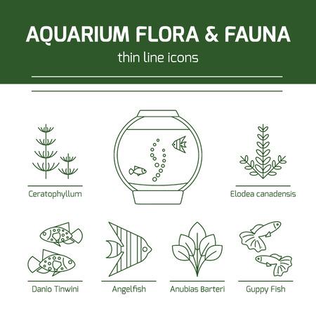 Thin line vector icons - aquarium flora and fauna Vektorové ilustrace