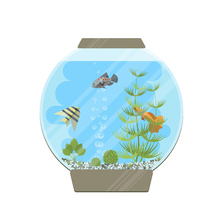 Cartoon vector home aquarium illustration with water, plants and fish.