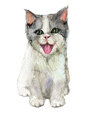 Kätzchen lokalisiert auf weißem Hintergrund, Aquarellillustration Standard-Bild - 96410870