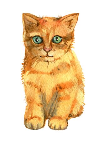 Rotes Kätzchen lokalisiert auf weißem Hintergrund, Aquarellillustration Standard-Bild - 96815064